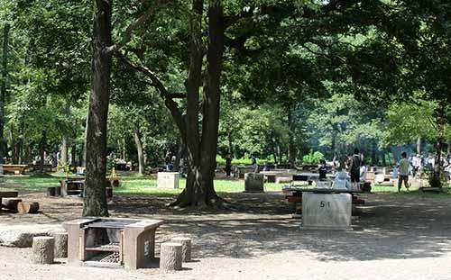 秋ヶ瀬公園バーベキュー場