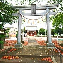 下大久保 諏訪社の鳥居から見る拝殿